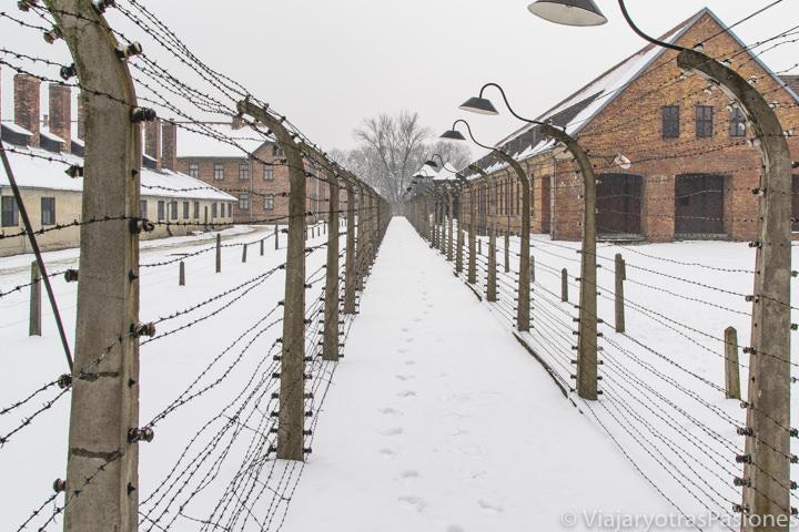 Detalle invernal del campo de concentración de Auschwitz, en Polonia