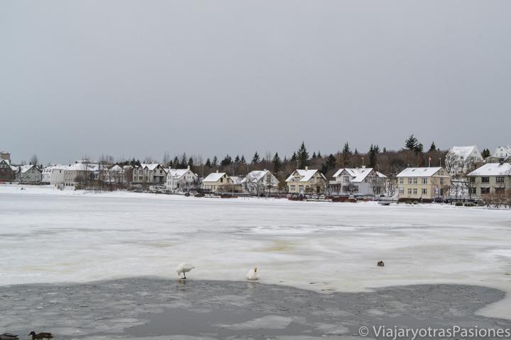 Vista del lago Tjörnin en el centro de Reikiavik en inverno